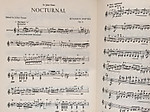 Nocturnal_4